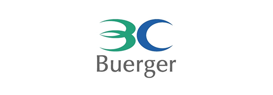 Buerger Consulting Inc. LOGO